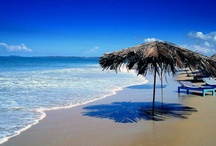 my dream travel