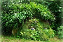 Garden of Wonder / by Kate Moran