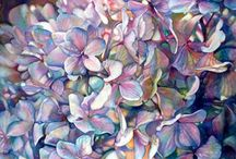Painting Hydrangeas / by Francoise Chauray