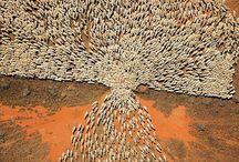 Sheep sheeeep