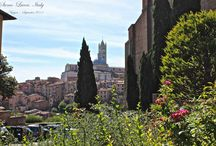 Siena-Lucca