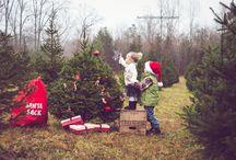 Family Christmas Shoot / by Sarah Sharp