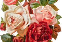 Розы|Картинки с розами / Картинки с розами для декупажа