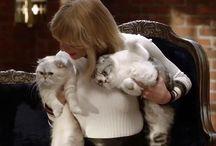 Cat lady! Taylor Swift!