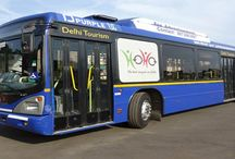 Hoho bus service / avail Hoho bus service and the delhi darshan drive to all the historical places.