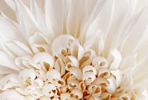 krep çiçek