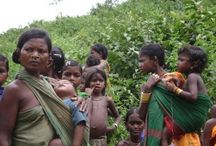 Tribal tourism in India