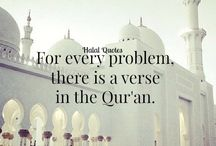 from Quran*