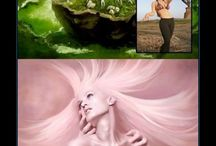 photoshop and creative photography