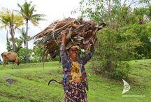 Bali / Ślub i miesiąc miodowy na rajskiej wyspie Bali.  Wyspa Bali to miejsce na Ziemi stworzone do ceremonii ślubnej, która może odbyć się na rajskiej plaży, w egzotycznym ogrodzie lub prywatnej willi. Ślub w tych niecodziennych okolicznościach, w niemalże baśniowym anturażu z pewnością podkreśli piękno doniosłej chwili, a po latach stanowić będzie nadal żywe wspomnienie. Zacznij budować je z nami!  wakacjewindonezji.pl