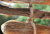 Driftwood / by Carol Blevins