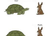 Amusing things I like