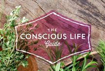 THE CONSCIOUS LIFE GUIDE