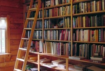 Books / mostly just the bookshelves i want to have when im a real person with an actual house.