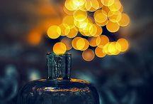 L'art de la photographie...