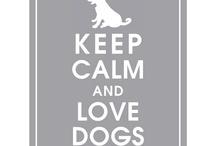 Keep calm!   / by Randi Long