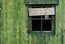 Kleur: Groen / Green / Mooie foto's in de kleur groen