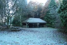 Frosty Days / Some beautiful white winter sights at Evenley Wood Garden
