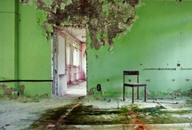 Greens / by Hanna Forsman