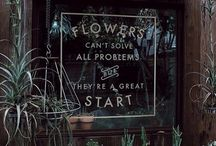 flowers can solved all problems