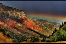 Logan Canyon / by Linda Langevin