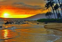 Hawaii / by Z. C.