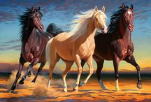 A Horse Paintings