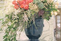 Flower Arrangements / Cut flowers and plants