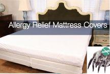 Allergy and Anti-Bedbug Bedding