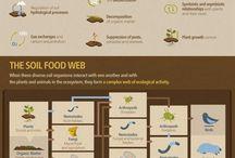 composting science