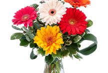 Administrative Professionals Week / Administrative Professionals Week starts Wednesday, April 26th. This year, show those who help your company run smoothly just how much you appreciate their hard work by sending a bright and beautiful floral arrangement to add some color to their lives and work space! http://www.theflowerbucket.com/occasions/administrative-professionals-day-flowers/
