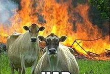 Funnies: