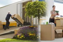 Global Migration Through Best Packers And Movers In Bangalore