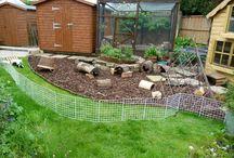 Guinea pig play / Outside area