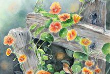 растения / красивые растения, вырастить растения, цветы