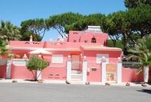 Pink!! / Antyhing pink - my own photos