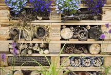 A Place For Wildlife / Gardens should be a haven for wildlife. This board shows ways to attact wildlife into your garden.