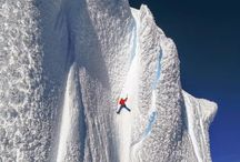 Alpin skidor
