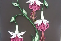 Quilling / by Terri Kocher