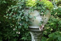Fabulous Container Gardens