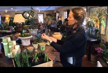 Gardening Videos with Barbara / A fun and helpful how-to videos on forcing flowering branches indoors, pruning a jasmine plant, forcing bulbs and creating windowsill trays by horticulturalist Barbara Bockbrader from Campo de' Fiori.