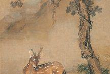 Shenk Quan