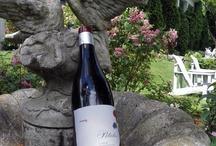 Coups de coeur vin - Wine picks / Our sommeliers share their comments on wine every Wednesday at 11.30 am on Facebook. //   Nos sommeliers partagent leurs coups de coeur vins tous les mercredis à 11h30 sur Facebook.  https://www.facebook.com/pages/Manoir-Hovey/108841609134045