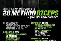 Workout / Biceps
