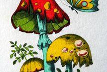 Tegnet svampe