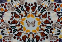 Paint - Damien Hirst / by Monica Osorio