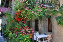 Courtyards, Cafes, Terraces