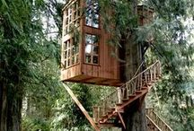 Tree House Me House / by Cyndy Engle