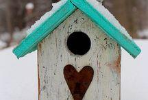Birdhouse / Gardening