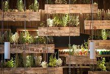 Planter i kasser